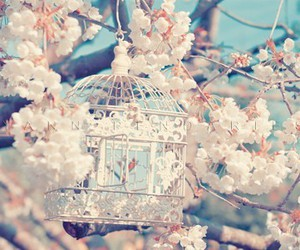 flowers, bird, and cage image