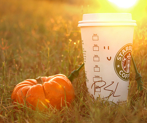 starbucks, pumpkin, and fall image
