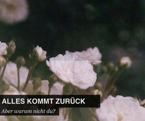 quote and deutschrap image