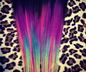 color, hair, and dyed image
