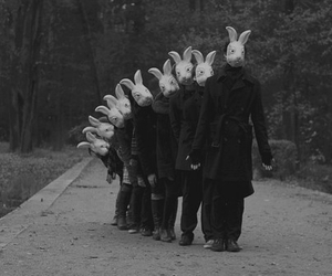 people and rabbit image