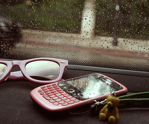 blackberry, pink, and rain image