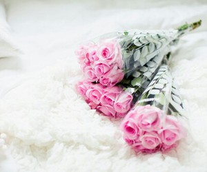 roses, you, and sweet image