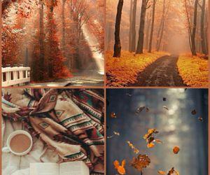 autumn, coffee, and beautiful image