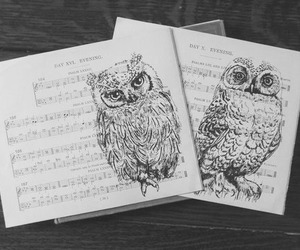 owl, music, and pretty image