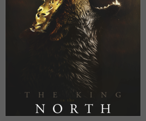 game of thrones, wolf, and robb stark image