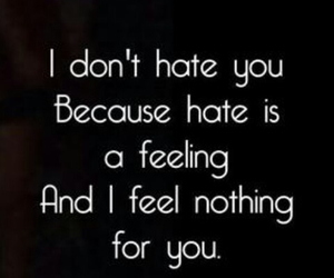 feelings, hate, and quote image