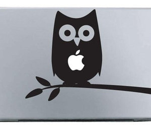 apple and owl image