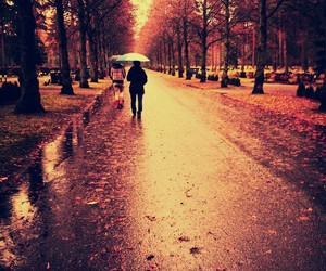 autumn, cemetery, and rain image