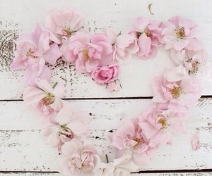 flowers, heart, and pink image