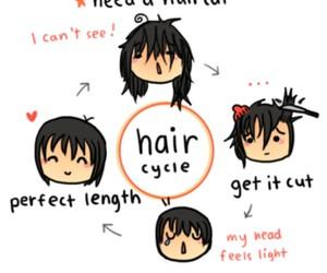 hair, funny, and haircut image