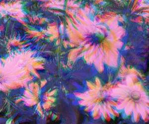 flowers, grunge, and trippy image