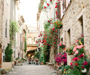 flowers, street, and travel image
