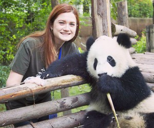 bonnie wright, china, and ginny weasley image
