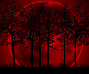 moon, red, and tree image