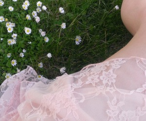 flowers, indie, and grass image