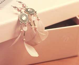 box, earings, and feathers image