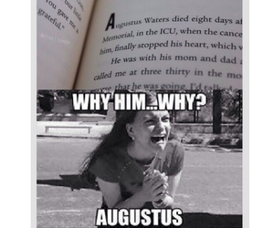 tfios, the fault in our stars, and book image