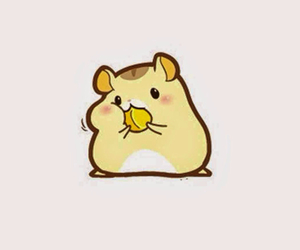 eating, hamster, and cute image