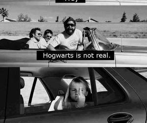 funny, laugh, and harry potter image