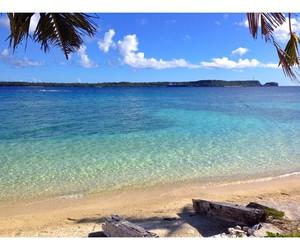 beach, guam, and palmtrees image