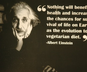 vegetarian and einstein image