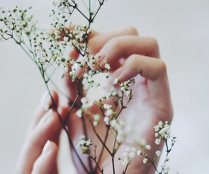 flower, vintage, and hands image