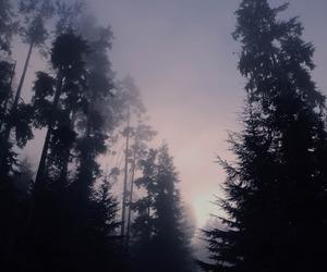 dark, grunge, and view image