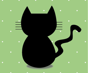 cat and background image