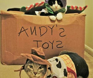 cat and toy story image