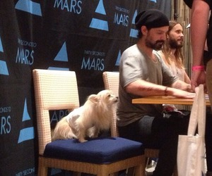 30 seconds to mars, tomo milicevic, and jared leto 2014 image