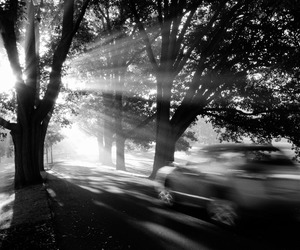 bw, impressionism, and crepuscular rays image