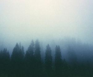 dark, indie, and pale image
