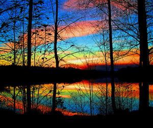 beautiful, peace, and nature image