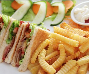 sandwich, food, and fries image