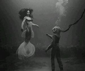 diver, sea, and nice image