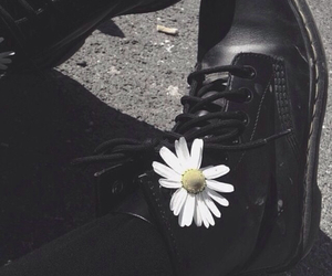 boots, daisy, and flowers image
