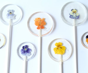 candy, flower, and lollipop image