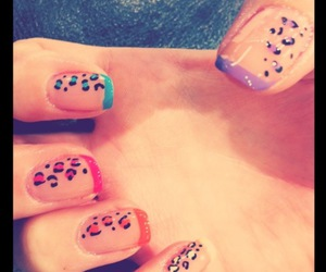colourful, leopard, and nails image