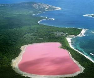 pink, australia, and lake image