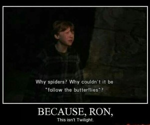 harry potter, twilight, and funny image