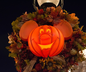 autumn, disney, and disneyland image