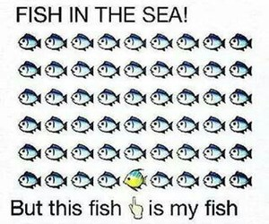 fish, funny, and mine image