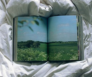 book, nature, and photography image