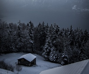 mountains, tree, and winter image
