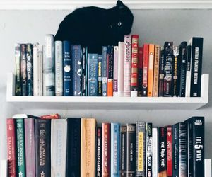 book, cat, and bookshelf image