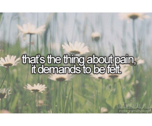 john green, quotes, and fault in our stars image