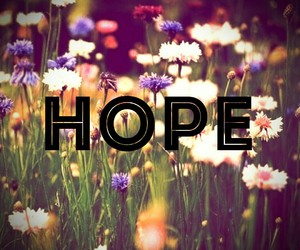beautiful, flower, and hope image
