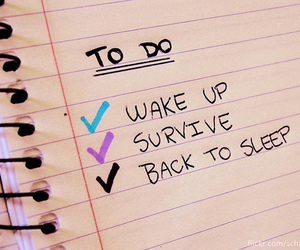 survive, sleep, and to do image