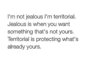 jealous, territorial, and quote image